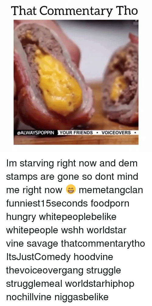 Hoodvines: That Commentary Tho  OALWAYSPOPPIN YOUR FRIENDS  VOICE OVERS Im starving right now and dem stamps are gone so dont mind me right now 😁 memetangclan funniest15seconds foodporn hungry whitepeoplebelike whitepeople wshh worldstar vine savage thatcommentarytho ItsJustComedy hoodvine thevoiceovergang struggle strugglemeal worldstarhiphop nochillvine niggasbelike
