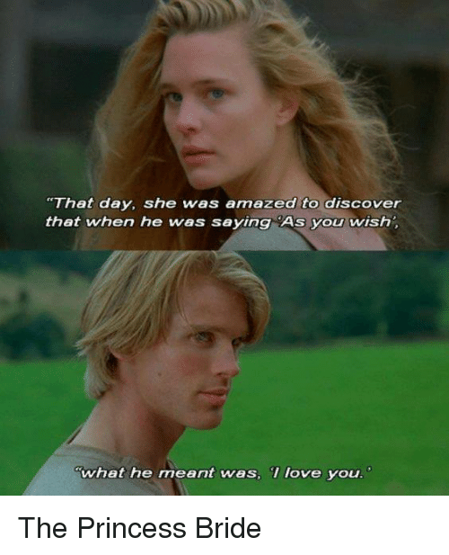 "The Princess Bride: ""That day, she was amazed to discover  that when he was saying As you wish  What he meant was, love you The Princess Bride"