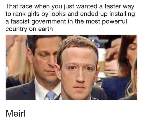 A Fascist: That face when you just wanted a faster way  to rank girls by looks and ended up installing  a fascist government in the most powerful  country on earth Meirl