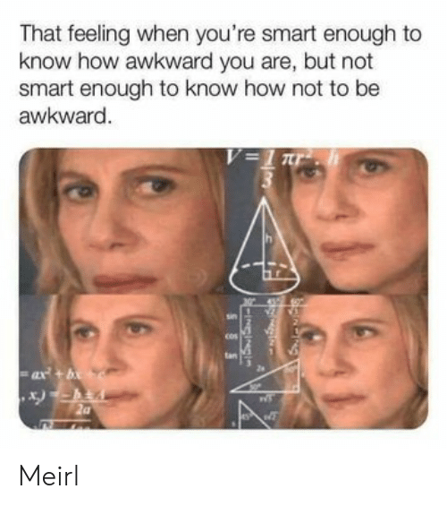 Awkward, That Feeling When, and MeIRL: That feeling when you're smart enough to  know how awkward you are, but not  smart enough to know how not to be  awkward.  V=1 r  tan  ax+b  -INGINS  SSS Meirl