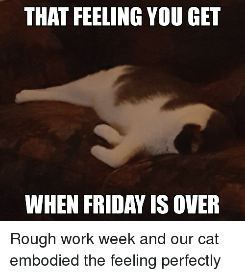 That Feeling You Get When Friday Is Over Friday Meme On Awwmemes Com