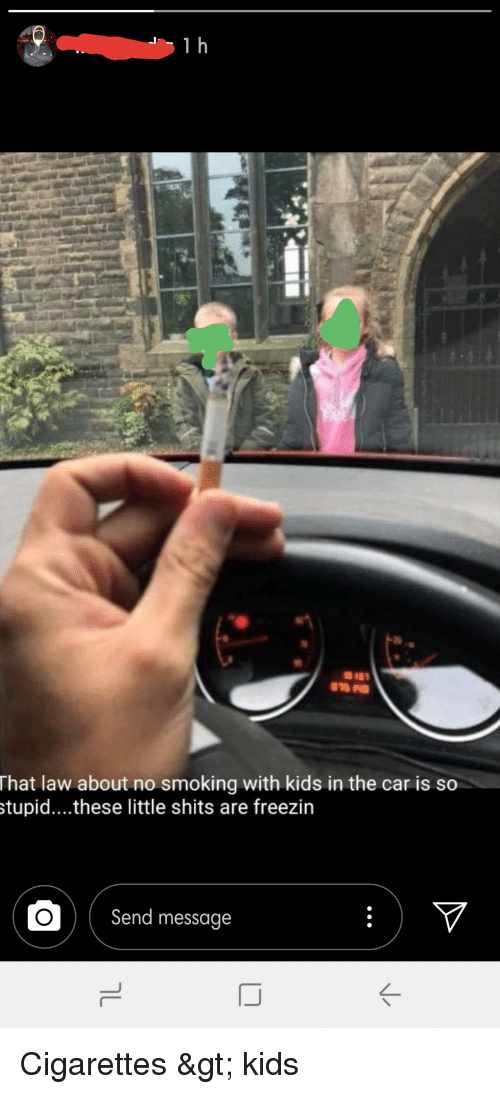 No Smoking In Car With Child Law >> That Law About No Smoking With Kids In The Car Is So