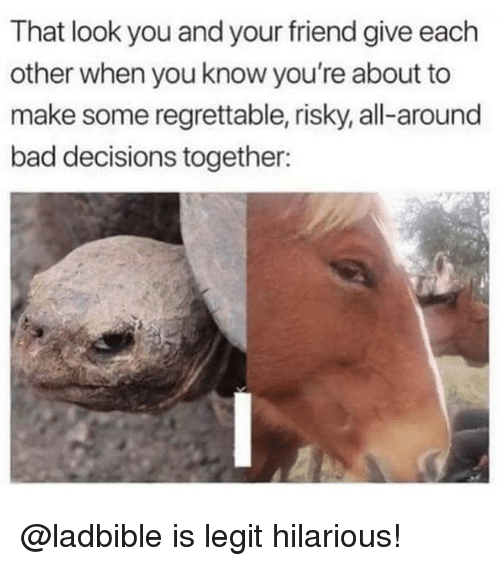 Bad, Memes, and Hilarious: That look you and your friend give each  other when you know you're about to  make some regrettable, risky, all-around  bad decisions together: @ladbible is legit hilarious!