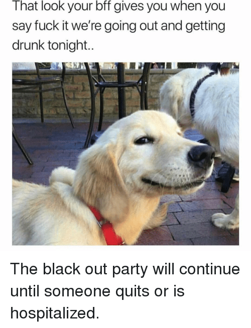 Drunk, Memes, and Party: That look your bff gives you when you  say fuck it we're going out and getting  drunk tonight The black out party will continue until someone quits or is hospitalized.