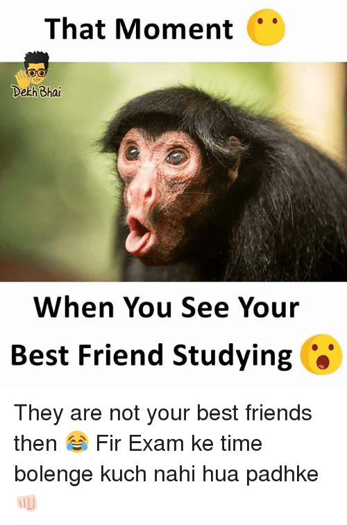 When You See Your Best Friend: That Moment  Dekh Bhai  When You See Your  Best Friend Studying They are not your best friends then 😂 Fir Exam ke time bolenge kuch nahi hua padhke 👊🏻