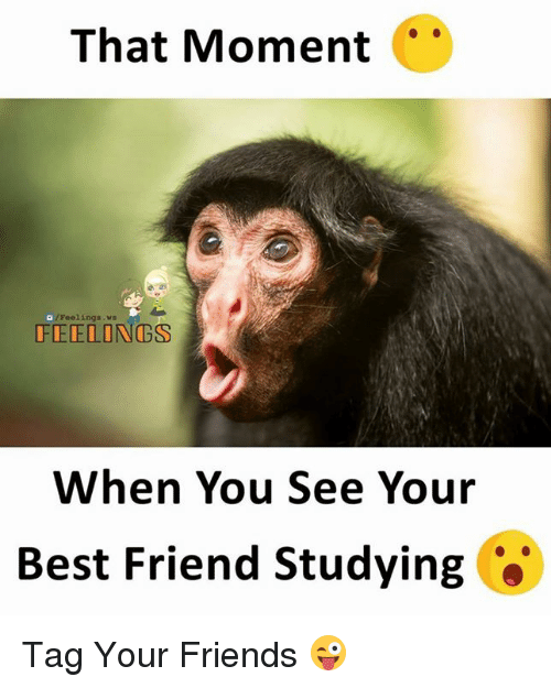 When You See Your Best Friend: That Moment  /Feelings.wa  FEELONGS  When You See Your  Best Friend Studying *' Tag Your Friends 😜
