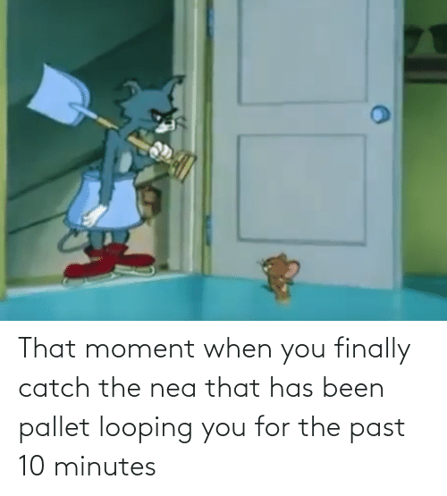 pallet: That moment when you finally catch the nea that has been pallet looping you for the past 10 minutes