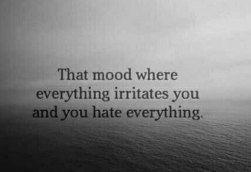 Mood, You, and Hate: That mood where  everything irritates you  and you hate everything.