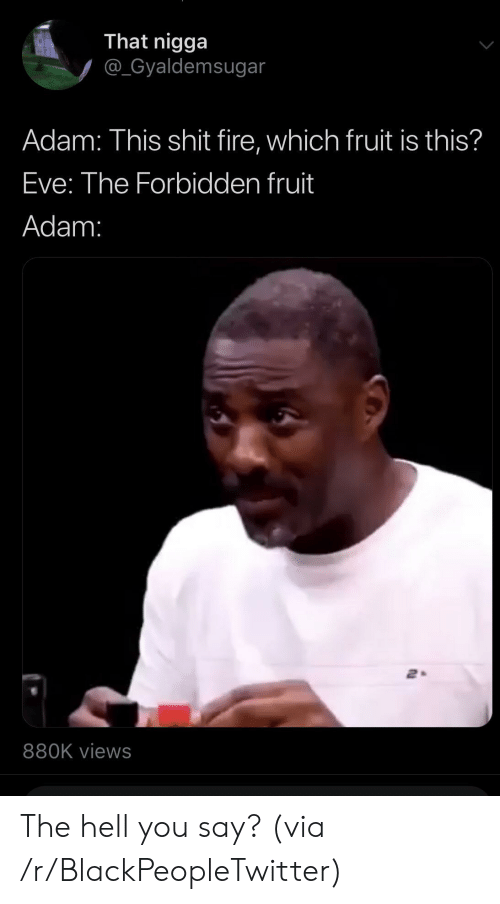 That Nigga: That nigga  @_Gyaldemsugar  Adam: This shit fire, which fruit is this?  Eve: The Forbidden fruit  Adam:  880K views The hell you say? (via /r/BlackPeopleTwitter)