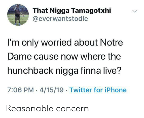 That Nigga: That Nigga Tamagotxhi  @everwantstodie  I'm only worried about Notre  Dame cause now where the  hunchback nigga finna live?  7:06 PM 4/15/19 Twitter for iPhone Reasonable concern