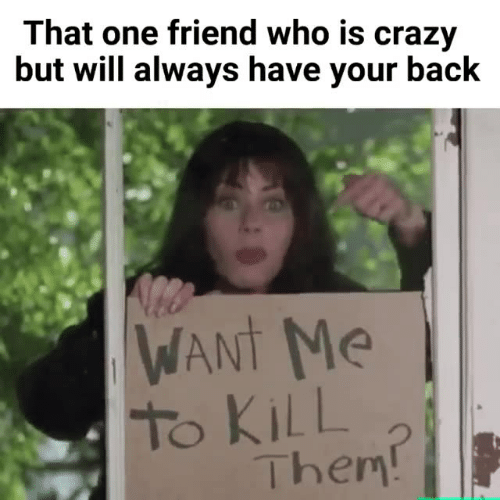 Crazy, Memes, and Back: That one friend who is crazy  but will always have your back  WANt Me  To KiLL  Them