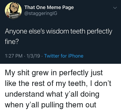 Iphone, Meme, and Shit: That One Meme Page  @staggeringlG  STAGGERING  96-291845  Anyone else's wisdom teeth perfectly  fine?  1:27 PM 1/3/19 Twitter for iPhone My shit grew in perfectly just like the rest of my teeth, I don't understand what y'all doing when y'all pulling them out