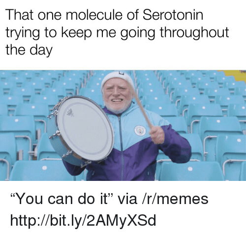 "Memes, Http, and Can: That one molecule of Serotonin  trying to keep me going throughout  the day ""You can do it"" via /r/memes http://bit.ly/2AMyXSd"