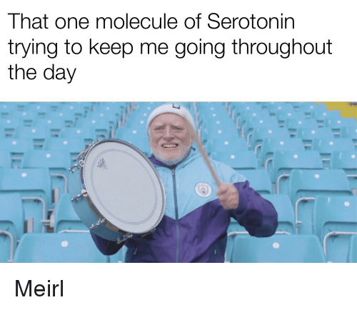 MeIRL, Serotonin, and One: That one molecule of Serotonin  trying to keep me going throughout  the day Meirl