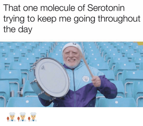 Funny, Serotonin, and One: That one molecule of Serotonin  trying to keep me going throughout  the day 👨🏼🍳👨🏼🍳👨🏼🍳
