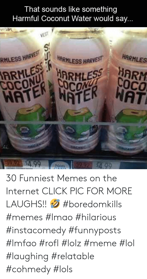 Click, Internet, and Lmao: That sounds like something  Harmful Coconut Water would say  REUHARHLESS HARVES  HARMLES  RHLESS HARVE 30 Funniest Memes on the Internet CLICK PIC FOR MORE LAUGHS!! 🤣 #boredomkills #memes #lmao #hilarious #instacomedy #funnyposts #lmfao #rofl #lolz #meme #lol #laughing #relatable #cohmedy #lols