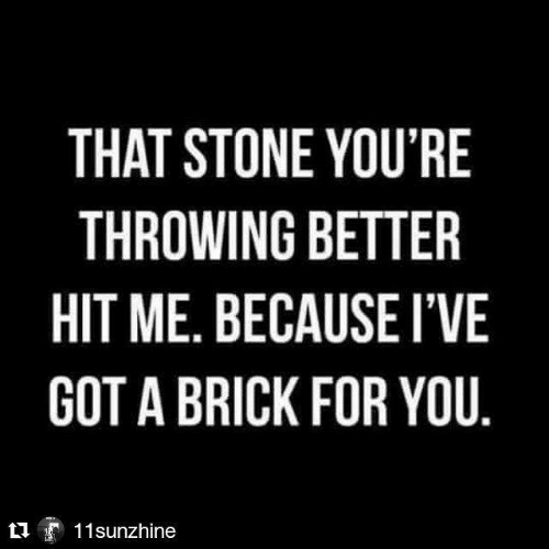 Got, Brick, and Stone: THAT STONE YOU'RE  THROWING BETTER  HIT ME. BECAUSE I'VE  GOT A BRICK FOR YOU.  11sunzhine