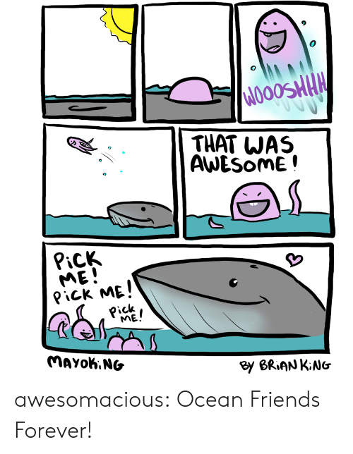 Friends, Tumblr, and Blog: THAT WAS  AWESOME!  PiCK  ME!  Pick ME!  Pick  ME!  MAYOK.NG  By BRIAN KiNG awesomacious:  Ocean Friends Forever!