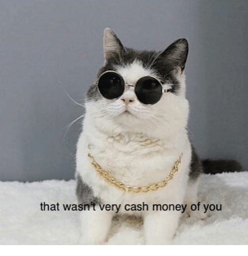Money, Cash Money, and You: that wasn't very cash money of you
