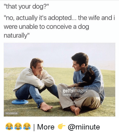 """Conceivment: """"that your dog?""""  """"no, actually it's adopted... the wife and i  were unable to conceive a dog  naturally""""  gettyimages  Darama 😂😂😂   More 👉 @miinute"""