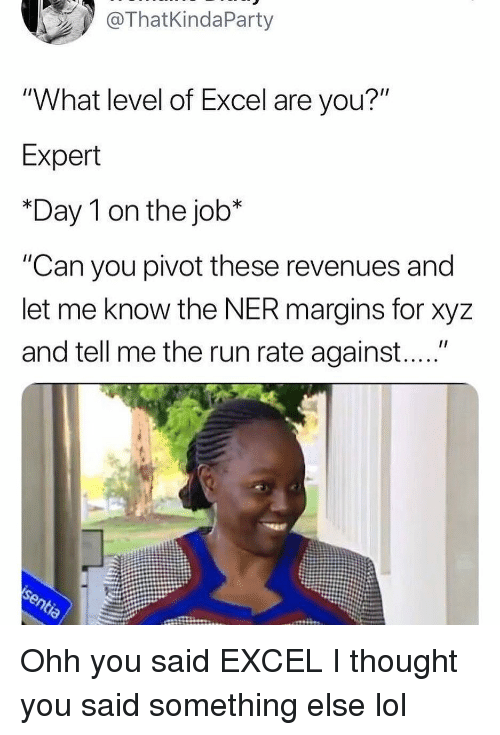 "xyz: ThatKindaParty  ""What level of Excel are you?""  Expert  *Day 1 on the job*  ""Can you pivot these revenues and  let me know the NER margins for xyz  and tell me the run rate against...."" Ohh you said EXCEL I thought you said something else lol"
