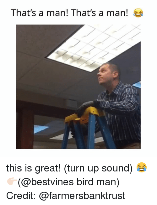Memes, Turn Up, and 🤖: That's a man! That's a man! this is great! (turn up sound) 😂 👉🏻(@bestvines bird man) Credit: @farmersbanktrust