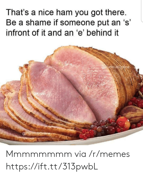 Memes, Nice, and Got: That's a nice ham you got there.  Be a shame if someone put an 's'  infront of it and an 'e' behind it  @PunHubonline  @PunHubonline Mmmmmmmm via /r/memes https://ift.tt/313pwbL