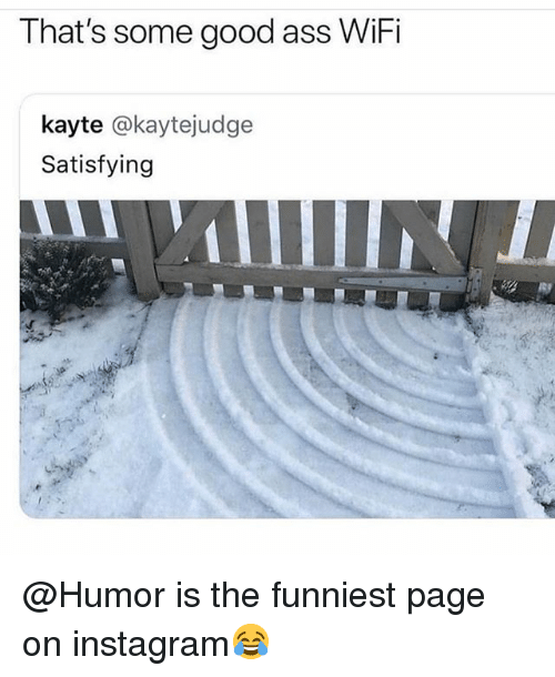 Ass, Instagram, and Memes: That's some good ass WiFi  kayte @kaytejudge  Satisfying @Humor is the funniest page on instagram😂