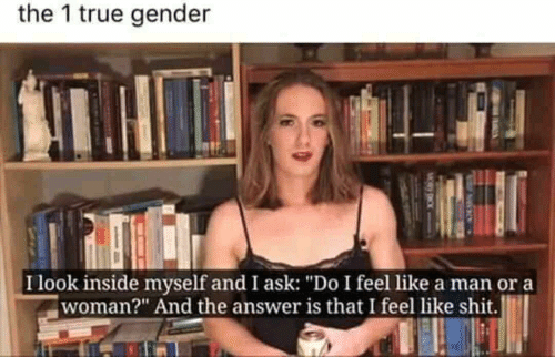 """Shit, True, and Answer: the 1 true gender  Ilook inside myself and I ask: """"Do I feel like a man ora  woman?"""" And the answer is that I feel like shit."""