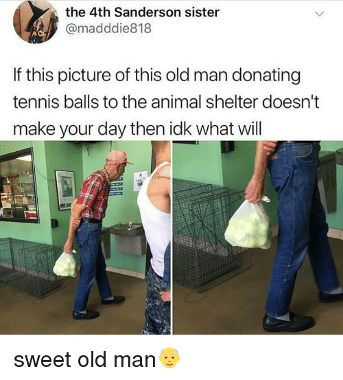 Old Man, Animal, and Animal Shelter: the 4th Sanderson sister  @madddie818  If this picture of this old man donating  tennis balls to the animal shelter doesn't  make your day then idk what will sweet old man👴