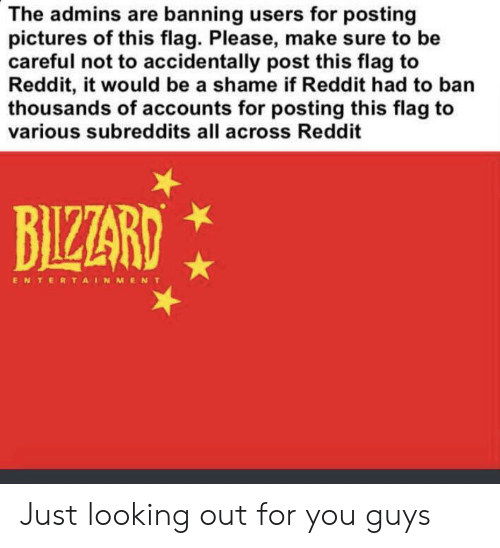 Reddit, Pictures, and Accidental Racism: The admins are banning users for posting  pictures of this flag. Please, make sure to be  careful not to accidentally post this flag to  Reddit, it would be a shame if Reddit had to ban  thousands of accounts for posting this flag to  various subreddits all across Reddit  BIZZARD  ENTERTAINMENT Just looking out for you guys
