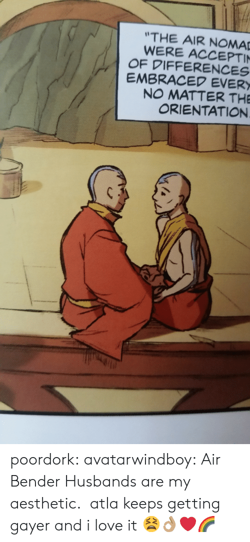 atla: THE AIR NOMA  WERE ACCEPTI  OF DIFFERENCES  EMBRACED EVER  NO MATTER THE  ORIENTATION poordork: avatarwindboy: Air Bender Husbands are my aesthetic. atla keeps getting gayer and i love it   😫👌🏽❤️🌈