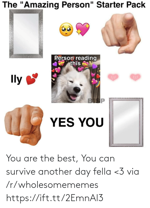 "Fella: The ""Amazing Person"" Starter Pack  Person reading  this  Ily  BISP  YES YOU You are the best, You can survive another day fella <3 via /r/wholesomememes https://ift.tt/2EmnAl3"