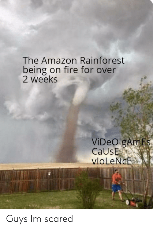 Amazon, Fire, and Video Games: The Amazon Rainforest  being on fire for over  2 weeks  ViDeO gAmEs  CaUsE  vloLeNcE Guys Im scared