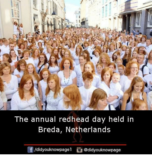 annuale: The annual redhead day held in  Breda, Netherlands  /didyouknowpagel  @didyouknowpage