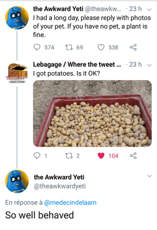 Awkward Yeti, Awkward, and Yeti: the Awkward Yeti @theawkw... 23 h v  I had a long day, please reply with photos  of your pet. If you have no pet, a plant is  fine.  9574  ti 69 538  Lebagage / Where the tweet... 23 h  I got potatoes. Is it OK?  91 t2104  the Awkward Yeti  @theawkwardyeti  En réponse à @medecindelaam  So well behaved