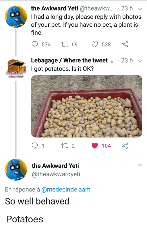 Awkward Yeti, Awkward, and Yeti: the Awkward Yeti @theawkw... 23 h v  I had a long day, please reply with photos  of your pet. If you have no pet, a plant is  fine.  Lebagage/Where the tweet  I got potatoes. Is it OK?  23 h v  the Awkward Yeti  @theawkwardyeti  En réponse à @medecindelaam  So well behaved Potatoes