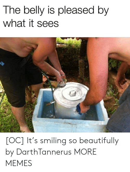 pleased: The belly is pleased by  what it sees [OC] It's smiling so beautifully by DarthTannerus MORE MEMES