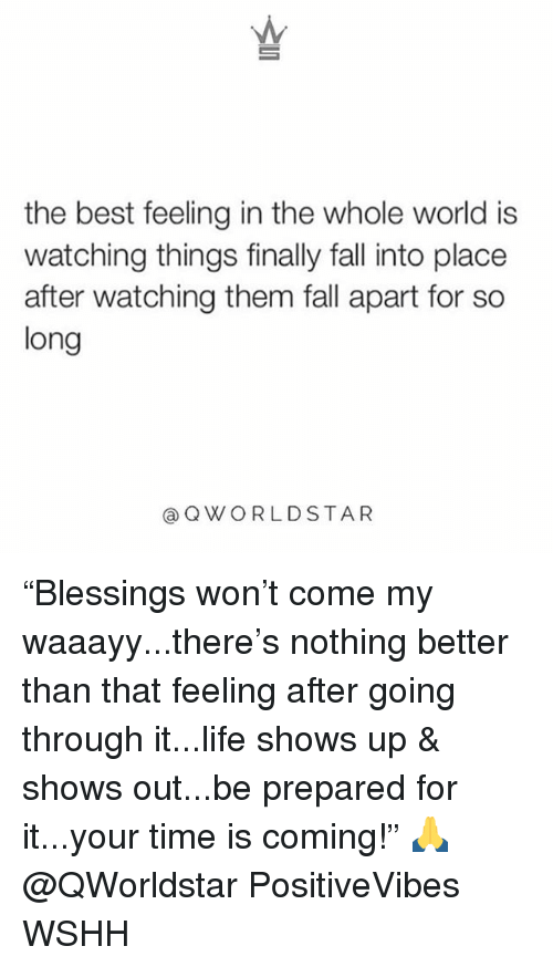 "Fall, Life, and Memes: the best feeling in the whole world is  watching things finally fall into place  after watching them fall apart for so  long  @QWORLDSTAR ""Blessings won't come my waaayy...there's nothing better than that feeling after going through it...life shows up & shows out...be prepared for it...your time is coming!"" 🙏 @QWorldstar PositiveVibes WSHH"