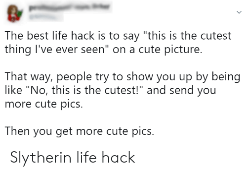 "Cute, Life, and Slytherin: The best life hack is to say ""this is the cutest  thing I've ever seen"" on a cute picture.  That way, people try to show you up by being  like ""No, this is the cutest!"" and send you  more cute pics.  Then you get more cute pics. Slytherin life hack"