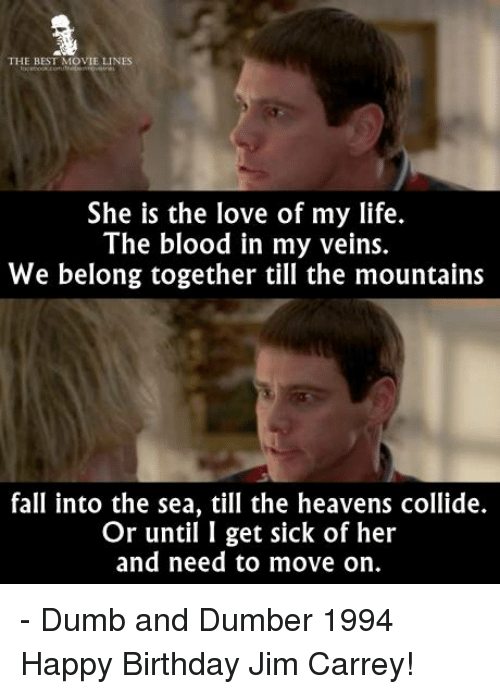 movie line: THE BEST MOVIE LINES  She is the love of my life.  The blood in my veins.  We belong together till the mountains  fall into the sea, till the heavens collide.  Or until I get sick of her  and need to move on. - Dumb and Dumber 1994  Happy Birthday Jim Carrey!