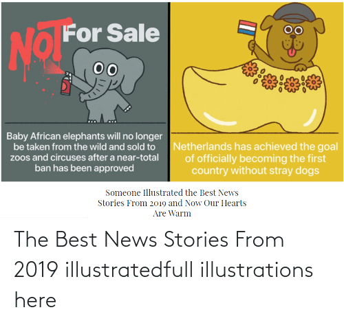 now:   The Best News Stories From 2019 illustratedfull illustrations here