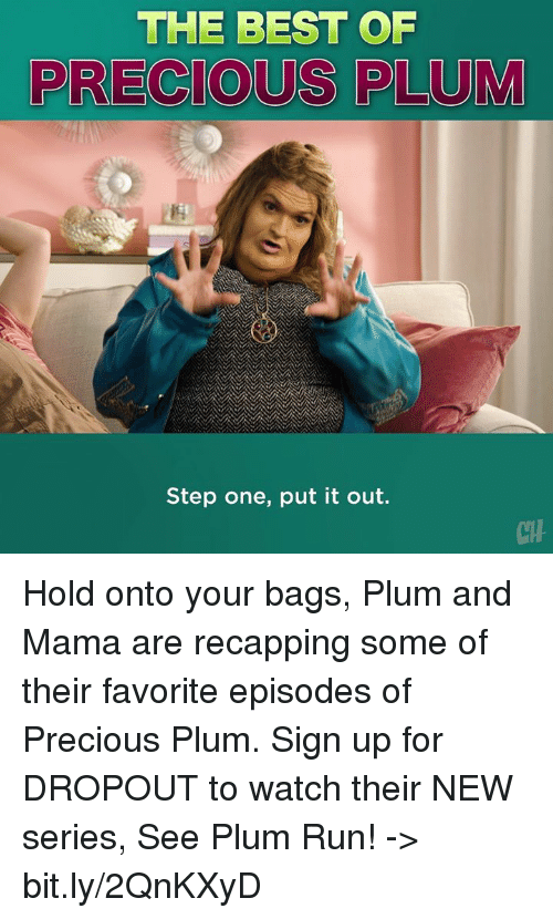 The Best Of Precious Plum Step One Put It Out Ch Hold Onto Your Bags
