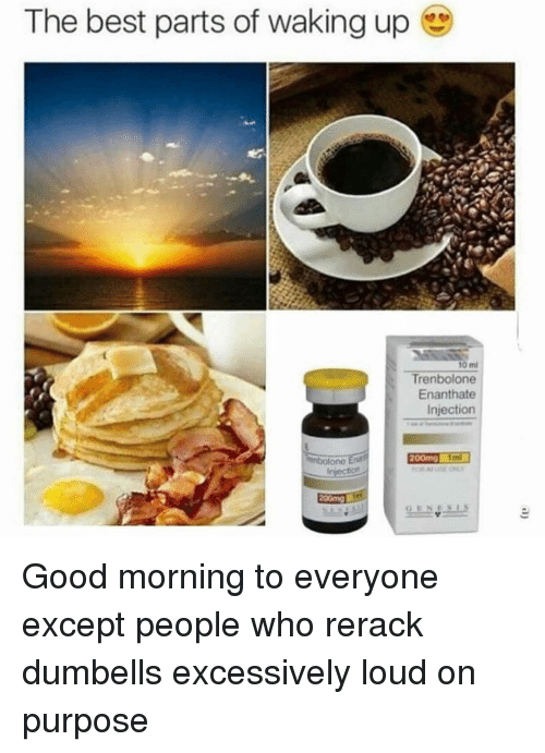 Memes, Good Morning, and Best: The best parts of waking up  10 mi  Trenbolone  Enanthate  Injection Good morning to everyone except people who rerack dumbells excessively loud on purpose