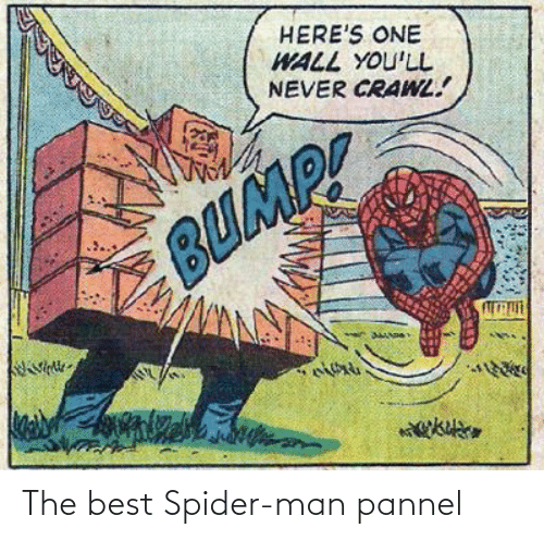SpiderMan: The best Spider-man pannel