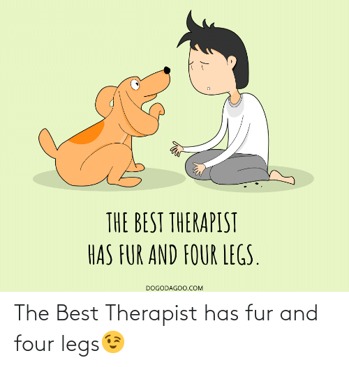 Best, Com, and Fur: THE BEST THERAPIST  HAS FUR AND FOUR LEGS.  DOGODAGOO.COM The Best Therapist has fur and four legs😉