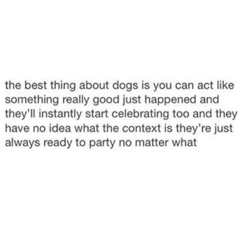 Dogs, Party, and Best: the best thing about dogs is you can act like  something really good just happened and  they'll instantly start celebrating too and they  have no idea what the context is they're just  always ready to party no matter what