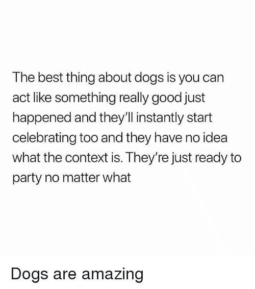 Dogs, Memes, and Party: The best thing about dogs is you can  act like something really good just  happened and they'll instantly start  celebrating too and they have no idea  what the context is. They're just ready to  party no matter what Dogs are amazing