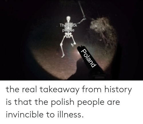 Polish People: The black  plague  Poland the real takeaway from history is that the polish people are invincible to illness.