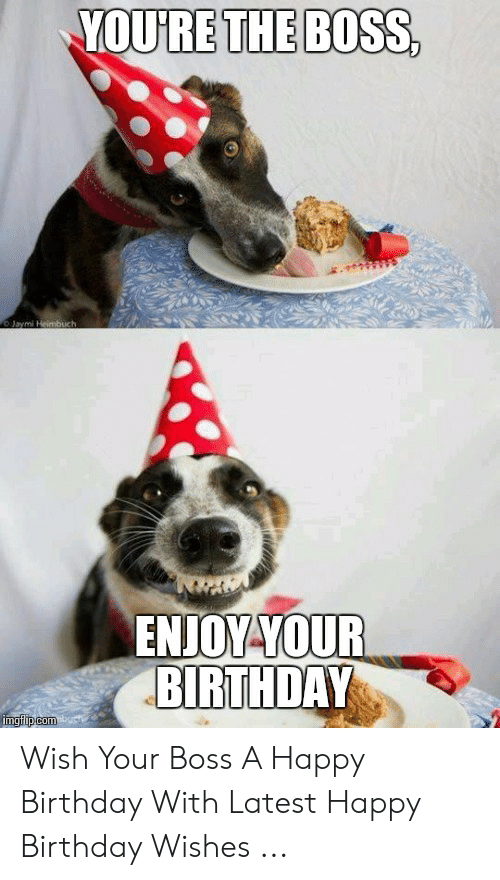 25 Best Memes About Latest Happy Birthday Latest Happy